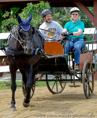Volunteer Carriage Driving