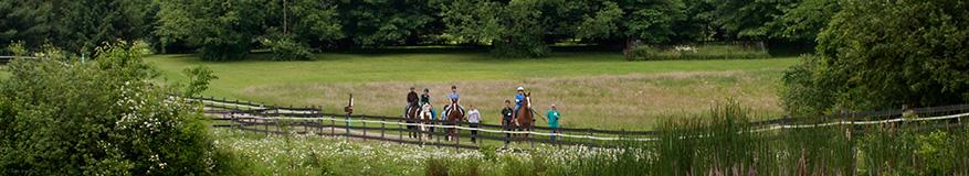 About Fieldstone Farm