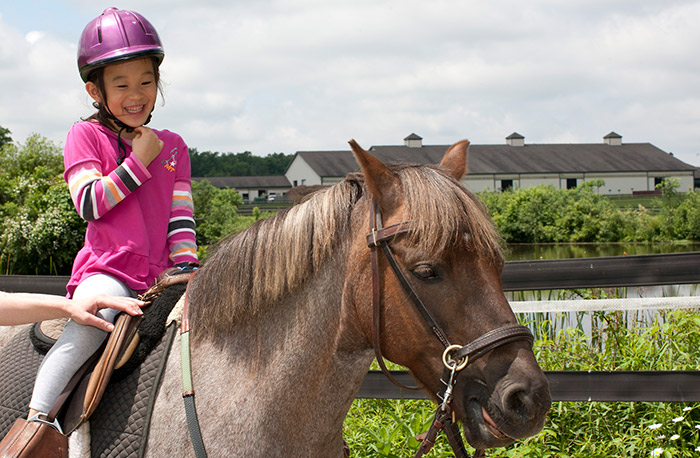 Our Programs | Fieldstone Farm Therapeutic Riding Center