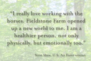 Steve Shaw quote
