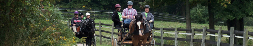 Veterans carriage driving