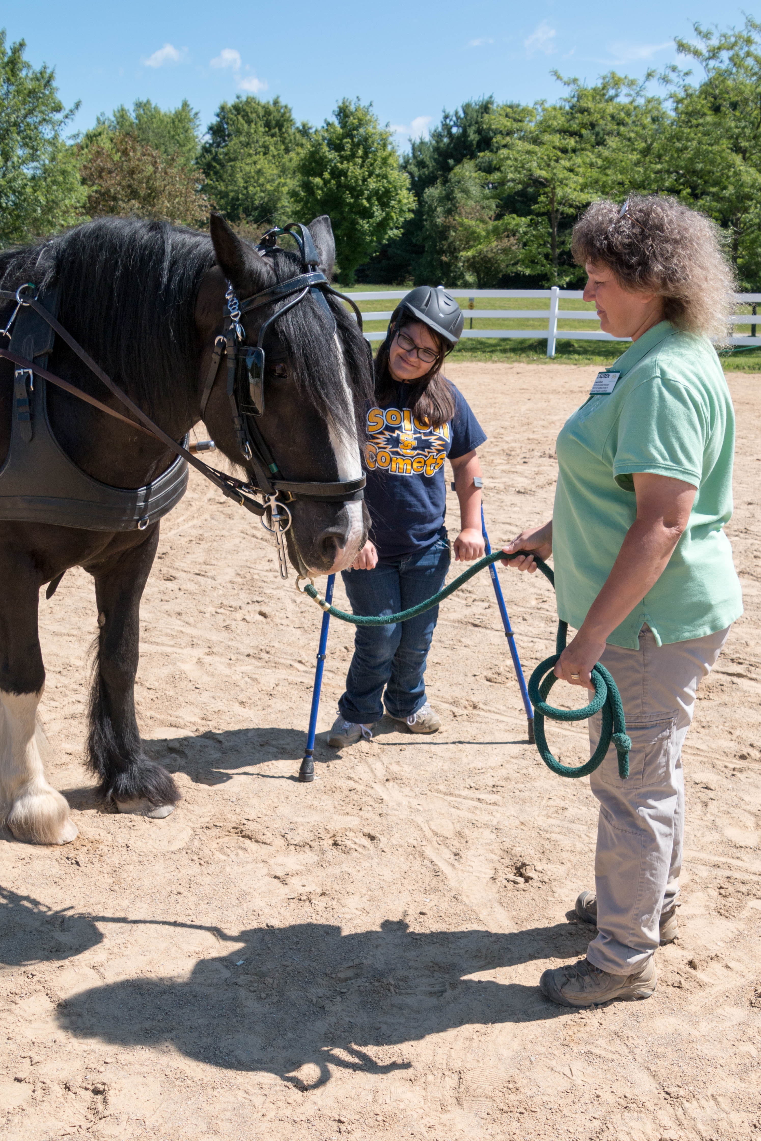 Youth Learn From Horses Fieldstone Farm Therapeutic